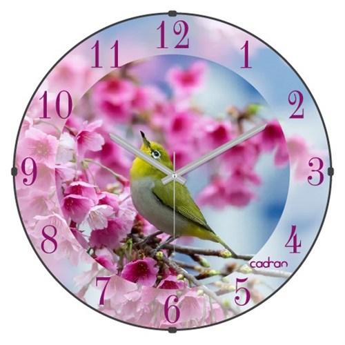Cadran Bombeli Cam Duvar Saati Pembe Çiçekler Kuş