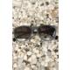Çınar E-Ticaret Füme Rengi Mat Çerçeve Tasarımlı Siyah Cam Detaylı Bayan Güneş Gözlük Modeli