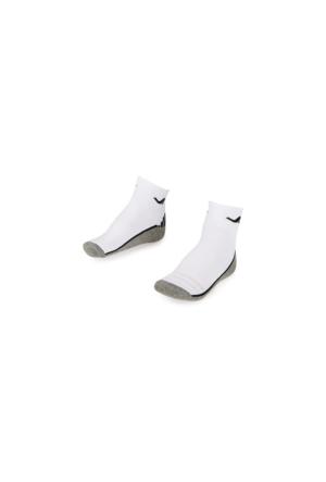 Lescon La-2193 Tenis Çorap (36-40)-2 Li