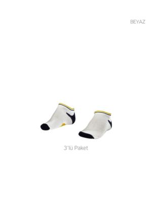 Lescon La-2187 Patık Çorap (31-35)-3 Lü