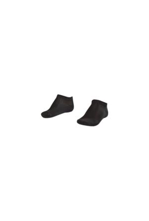 Lescon La-2183 Patık Çorap (40-45)-2 Li