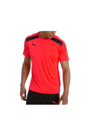 Puma It Evo Training Tee FW16 Erkek T-Shirt