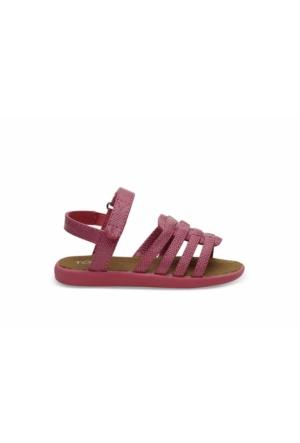 Toms 10010028 Fuchsia Iridescent Çocuk Günlük Ayakkabı