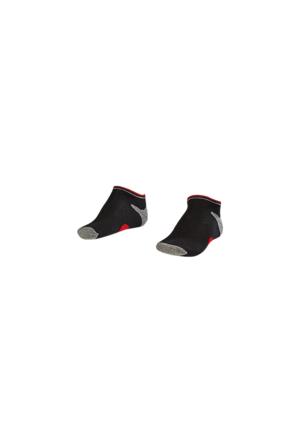 Lescon La-2187 Siyah Erkek Patik Çorap 26-30 3'Lü