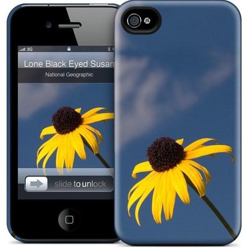 Gelaskins Apple iPhone 4 Hardcase Kılıf Lone Black Eyed Susan