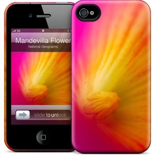 Gelaskins Apple iPhone 4 Hardcase Kılıf Mandevilla Flower