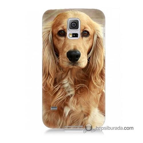 Teknomeg Samsung Galaxy S5 Mini Kapak Kılıf Köpek Baskılı Silikon