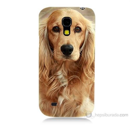 Teknomeg Samsung Galaxy S4 Mini Köpek Baskılı Silikon Kılıf