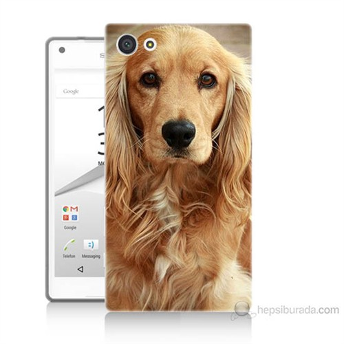 Teknomeg Sony Xperia Z5 Mini Köpek Baskılı Silikon Kılıf