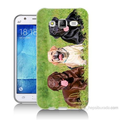 Teknomeg Samsung Galaxy J7 Kapak Kılıf Köpekler Baskılı Silikon